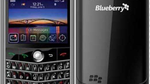 csl-blueberry-8250