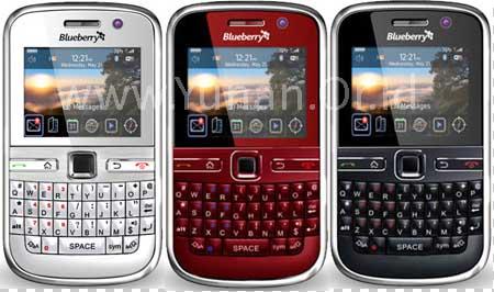 csl-blueberry-9500